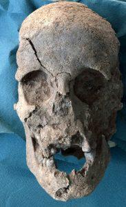 Cranio rinvenuto nella necropoli di Mont'e Prama